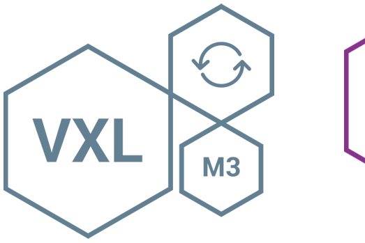 VXL VSE VBU logo