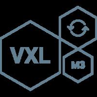 VXL Logo