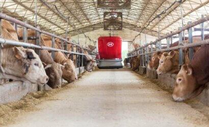 Lely feeding cow machine
